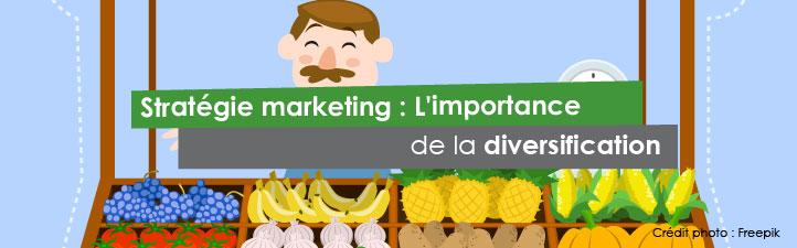 Stratégie marketing : L'importance de la diversification   Studio Grafik
